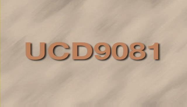 设计中使用 TI 的UCD9081 图形用户界面 (GUI) - 中文