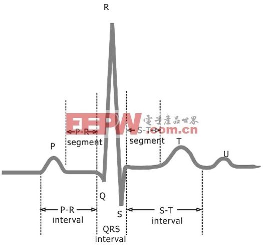 图1 典型的单周期心电图波形