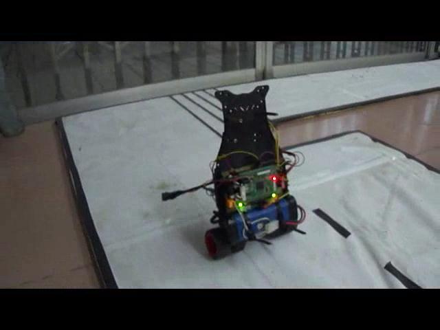 基于双轮自平衡的智能控制机器人设计