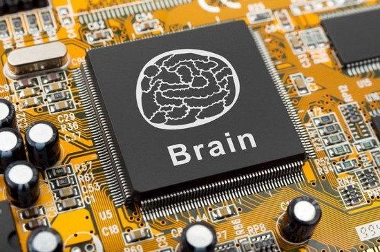 科学家研制新型微芯片 实时模拟大脑信息处理