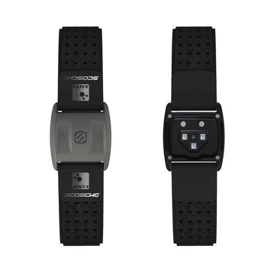 新款Rhythm+心率监测腕带 防水防汗价格便宜