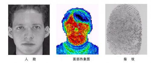 指纹识别中的图像处理研究------背景与基础名词解释(二)