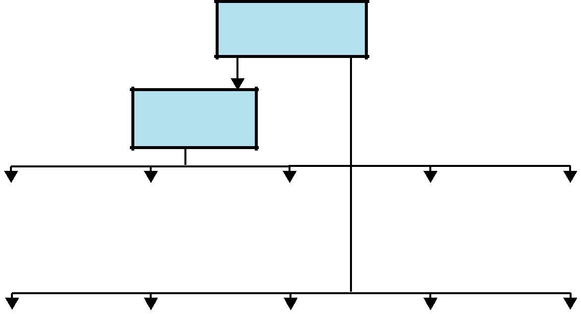 在低成本FPGA开发板上实现Oberon系统