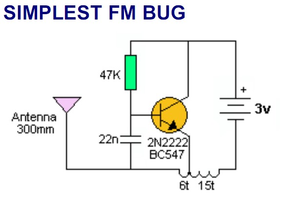 fm bug.jpg