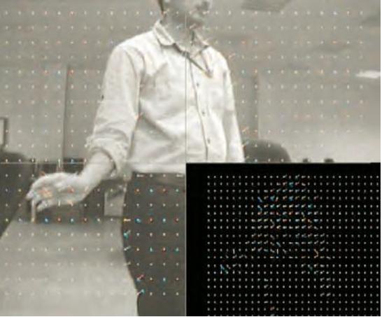 图 4:右下被运动向量网格覆盖的、经过 FPGA 处理后的实际帧
