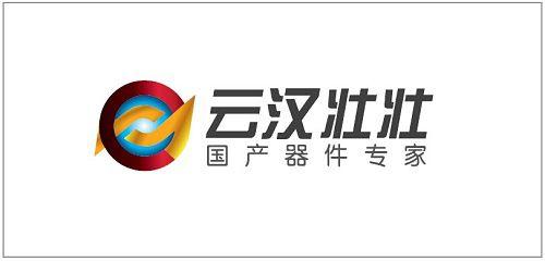 云汉壮壮:推动电子器件国产化,实现电子工业强国梦