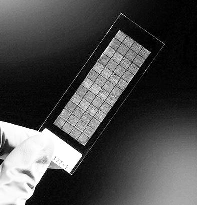 "DNA""折纸术""有助研发速度更快更廉芯片"