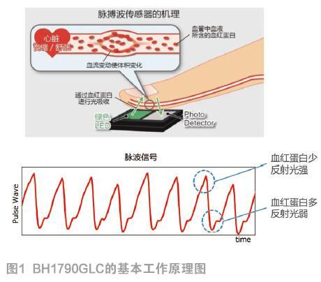 ROHM新型脉搏传感器助可穿戴设备再度升级