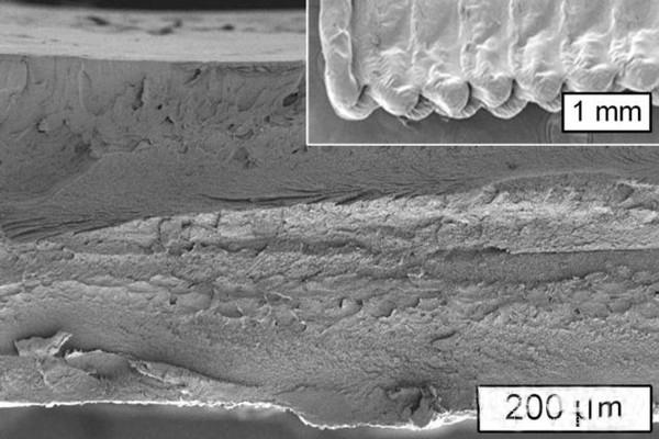 麻省理工学院研发出替代ABS和PLA的纤维素