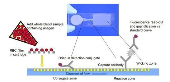 技术解析:微流控芯片为什么这样强大?