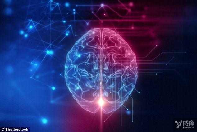 芯片也带嗅觉?神经元AI芯片可闻到爆炸物气味