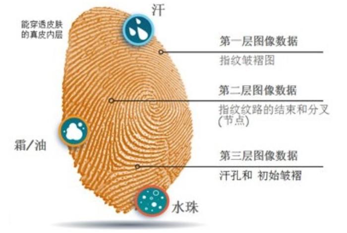 都是屏下指纹,三大方案有啥不同?