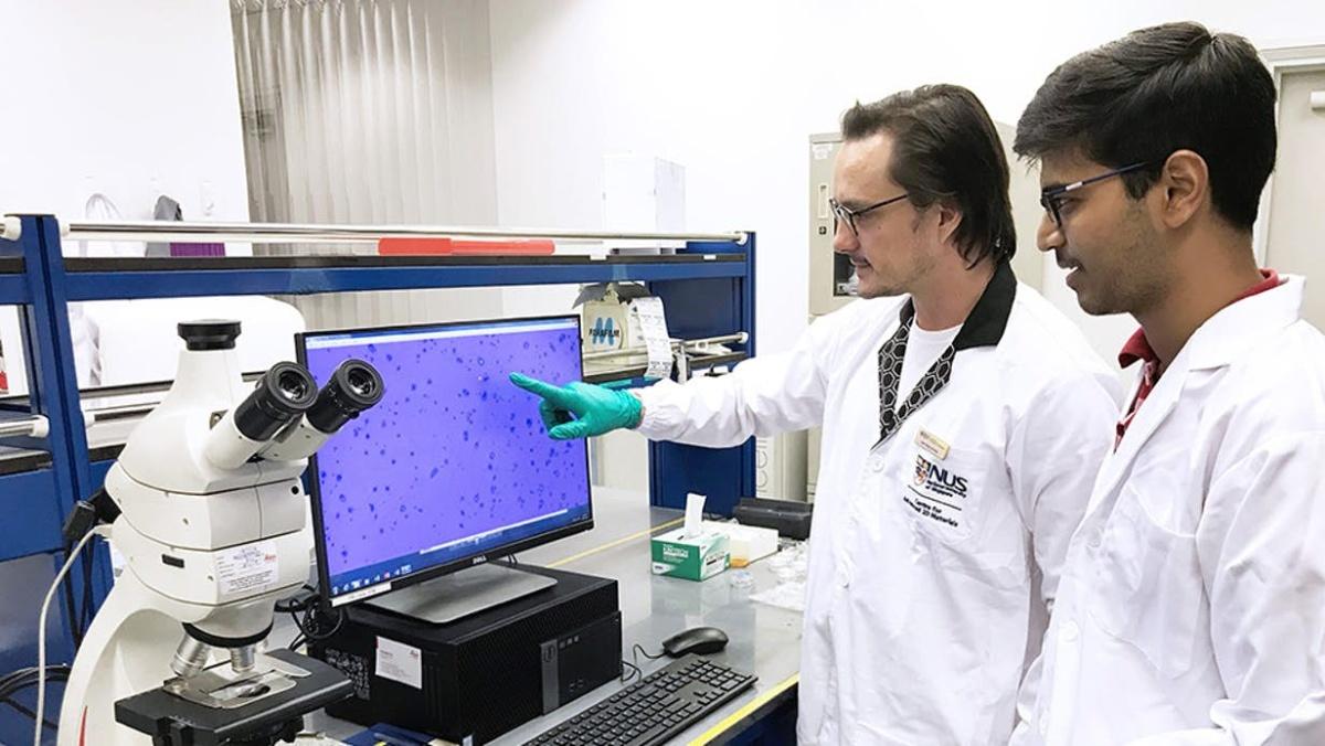 石墨烯产品质量堪忧,NUS研究人员证实其纯度过低