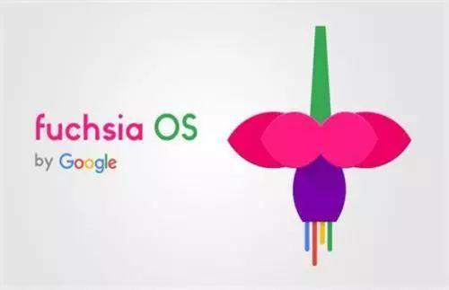谷歌:新操作系统Fuchsia加速推进,取代安卓