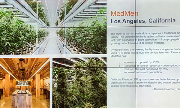 LED植物照明:光配方与合理成本是推广的关键