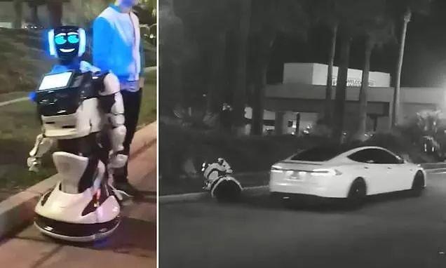 """CES 2019:再见了人类苦力,欢迎来到机器人""""事故""""世界"""