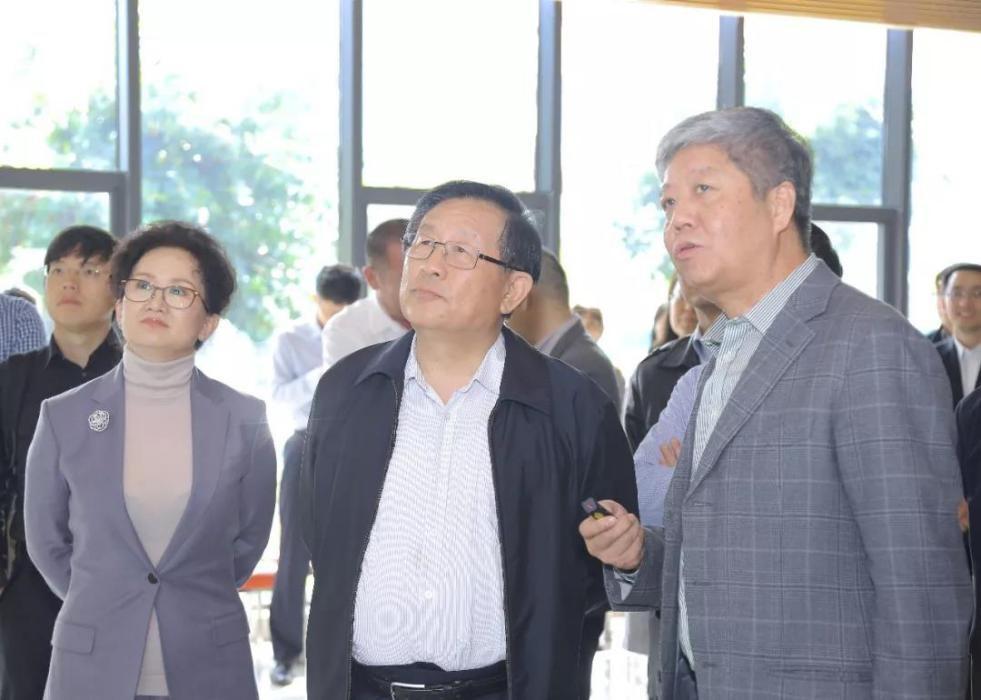 基本半导体参加全国政协副主席万钢调研活动