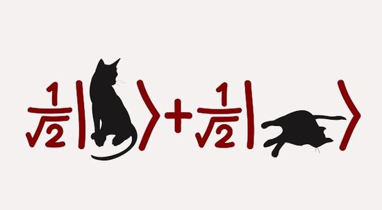 ▲薛定谔的猫现在已经成为了一种流行文化 来源:medium.com