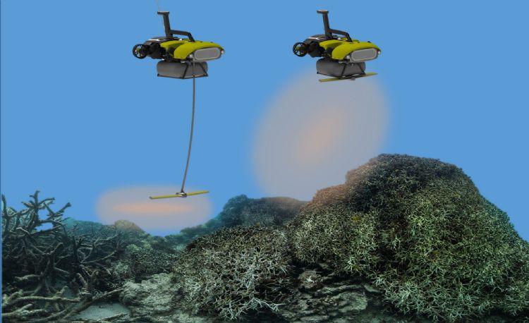 抢救大堡礁!水下机器人、3D打印技术建功