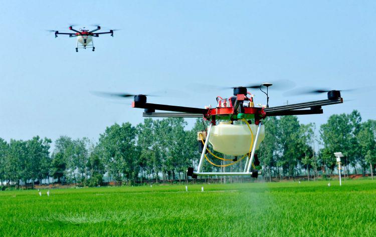 AI加无人机加卫星 NTT智能农业实验以增产30%为目标
