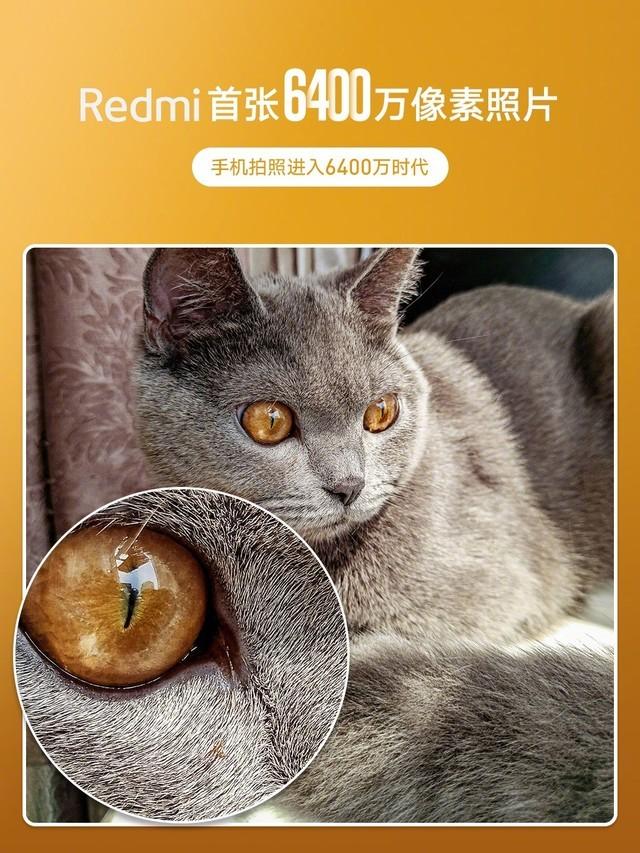 Redmi公布首张6400万像素样片 细节纤毫毕现