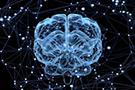 随机过程在数据科学和深度学习中有哪些应用?