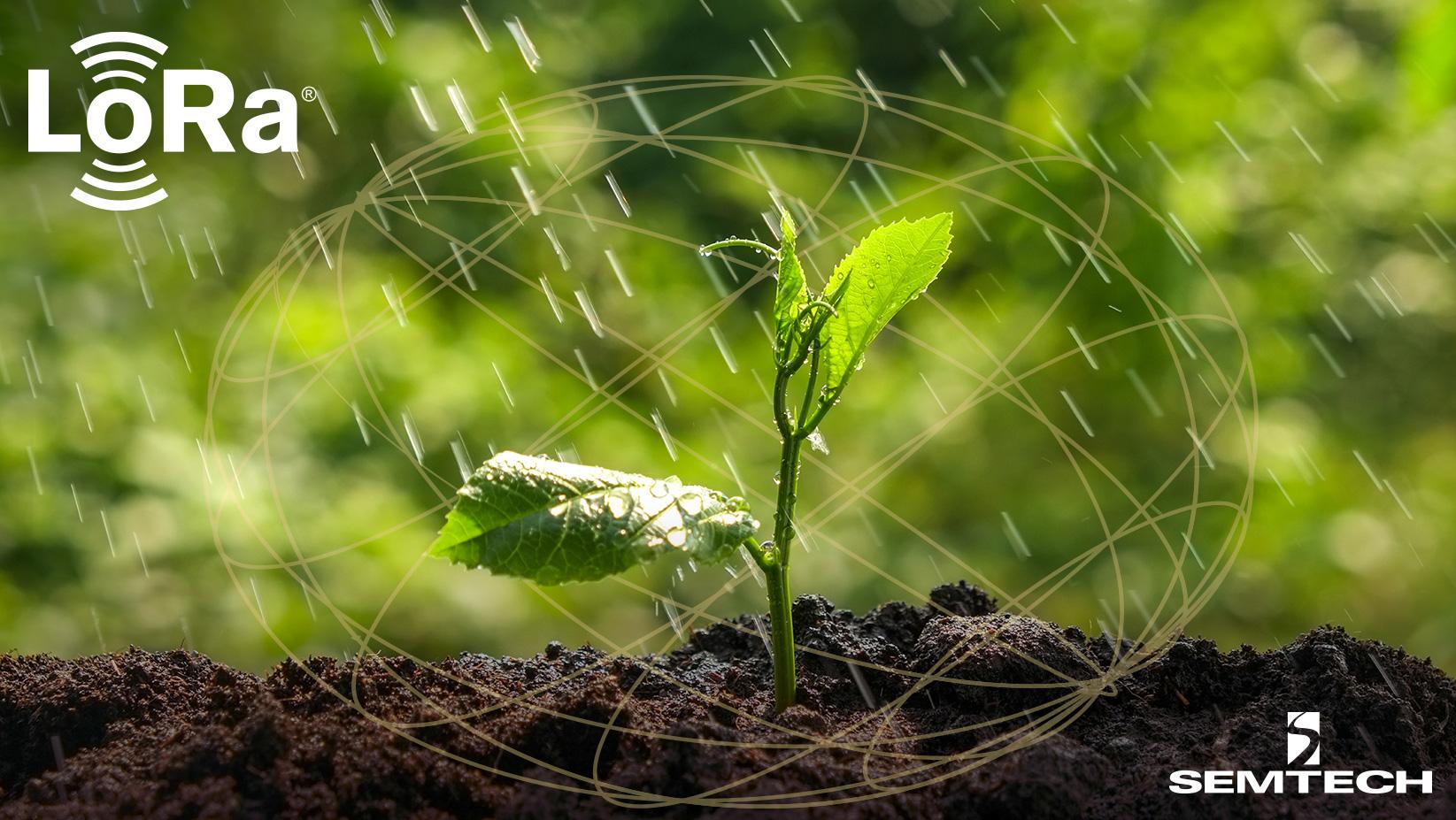 星纵智能借助LoRa无线技术将智慧农业转化为现实生产力