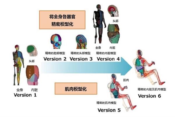 """提升车辆安全性能!丰田无偿公开虚拟人体模型""""THUMS"""""""